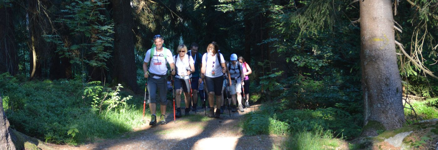Nordic Walking Englmar